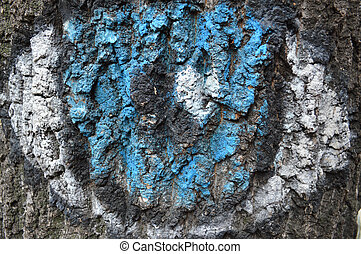 , wood bark with blue white and black color, texture