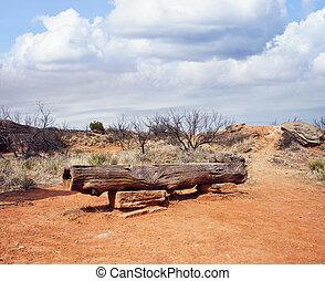 Palo Duro Canyon state park. Texas.