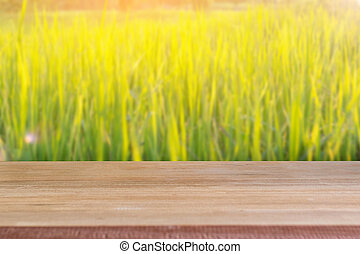 Wood blank table with rice field background.