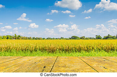 Wood board in the rice and grass field