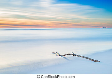 Wood branch on a white beach on twilight sunset