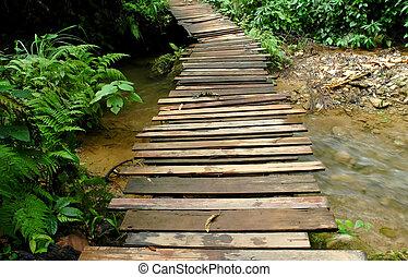 wood bridge accross stream