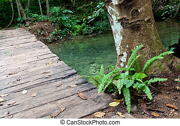 wood bridge to the waterfall in forest.