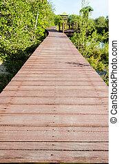 Wood bridge in mangroves