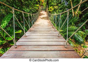 Wood bridge in the garden, Thailand