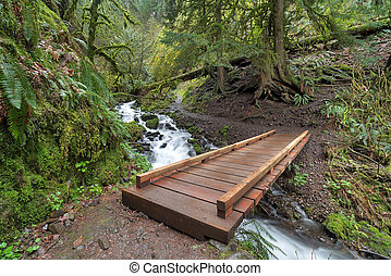 Wood Bridge over Wahkeena Creek Trail