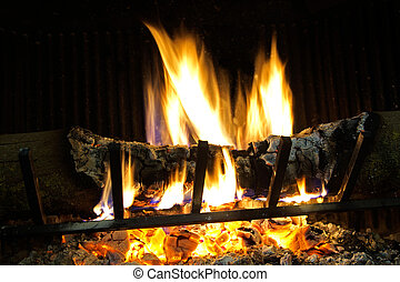 Wood burning fireplace in your home