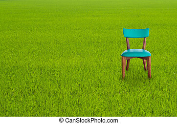 Wood chair on Green Grass - Wood chair Green Leather on...