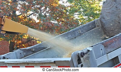 Wood chipper machine releasing the shredded woods into a truck chipper machine to remove