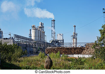 Wood factory with smoking chimneys