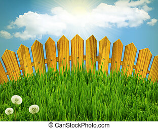 Wood fence and green grass meadow. Summer landscape with sun...