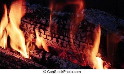 Wood Fire Loop