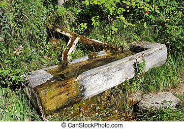 wood fountain on the dolomites