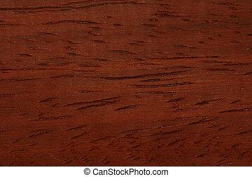 Wood Grain (Padouk) - Macro shot of padouk grain.