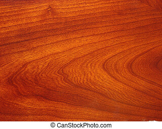 Wood Grain - Wood grain close-up.