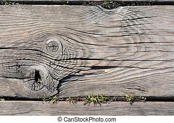 Wood knots close up