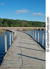 Wood Lake Boardwalk Across Marsh