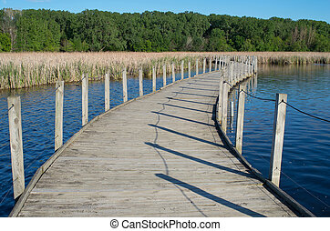 Wood Lake Boardwalk and Marshes