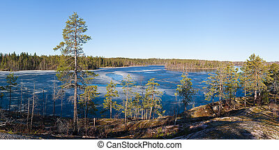 wood lake in the spring