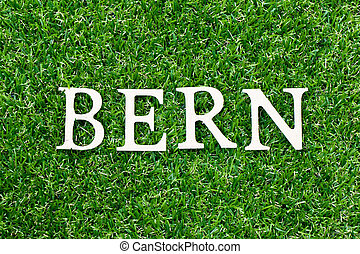Wood letter in word bern on green grass background