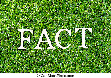 Wood letter in word fact on green grass background