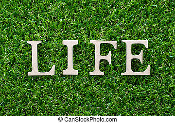 Wood letter in word life on artificial green grass background