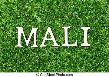 Wood letter in word mali on green grass background