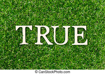 Wood letter in word true on green grass background
