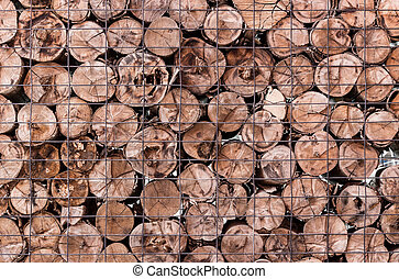 wood log background