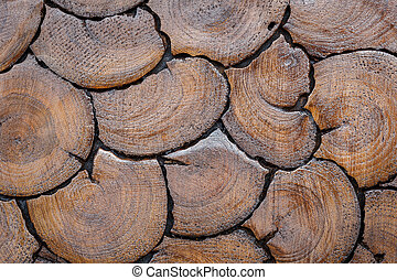 Wood log background texture