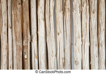 Wood log background textured