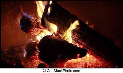 Wood Log Burning Camp Fire