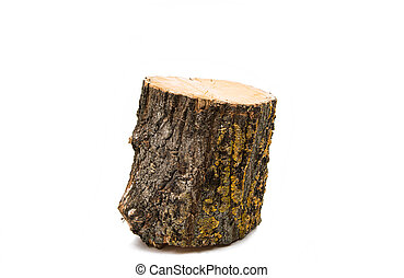 Wood log isolated
