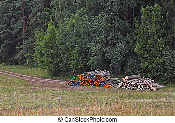Wood log stacks