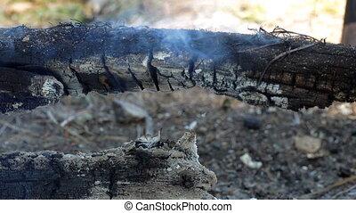 Wood logs smolder over an extinct fire