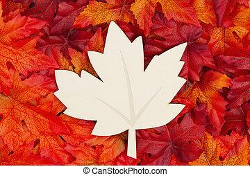 Wood maple leaf for the fall season