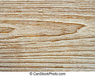 wood of tree texture