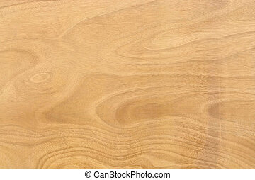Wood Panel Background - Pattern of Wood Surface Texture