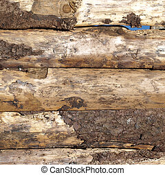 Wood picture