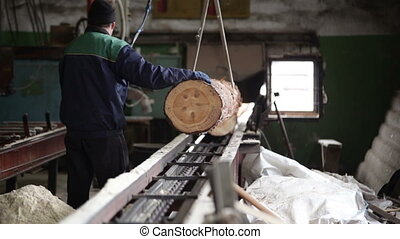 wood processing plant