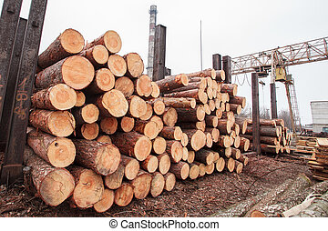 wood sawmill log crane timber