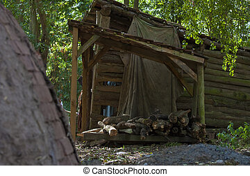 wood shack - shack or old shed in the woods or forest
