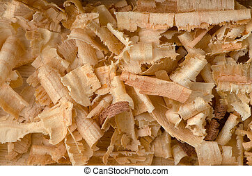 Background of the golden curls of wood shavings.