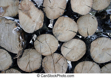 Cutted wood stack texture.