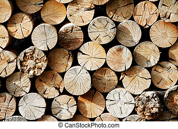 Wood storage with chunks of logs for fireplace