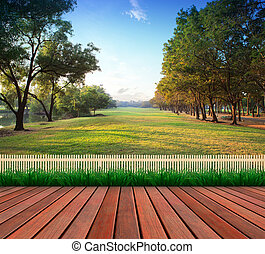 wood terrace and green grass field public park use as...