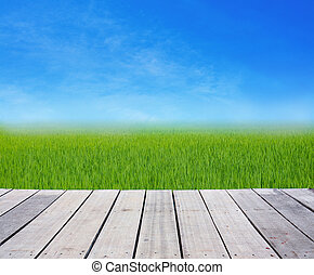 wood terrace with green rice field