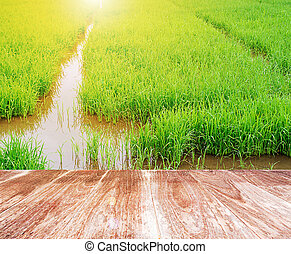 Wood terrace with rice field in the morning