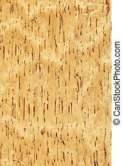 (wood, texture), シラカバ