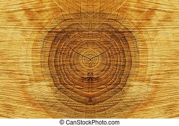 Wood-texture - wood texture closeup